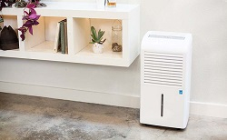 Market of Household Dehumidifiers in Japan